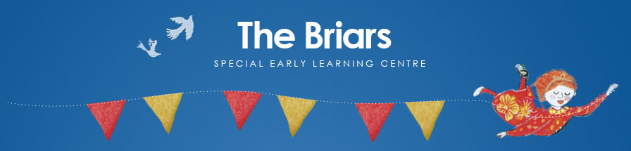 The Briars Special Early Learning Centre logo