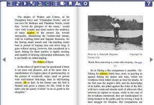 ePub Reader Screenshot
