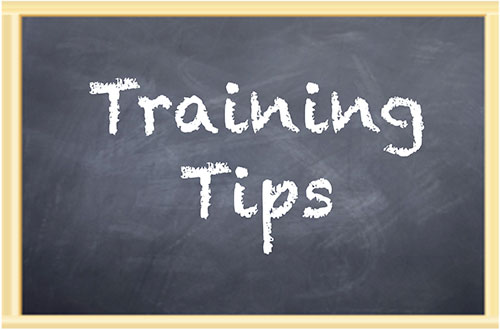 Training Tips written on chalkboard